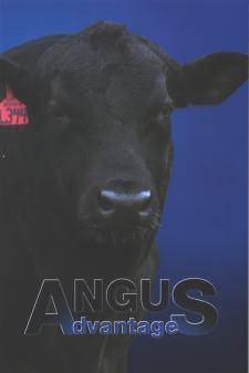 angus_advantages